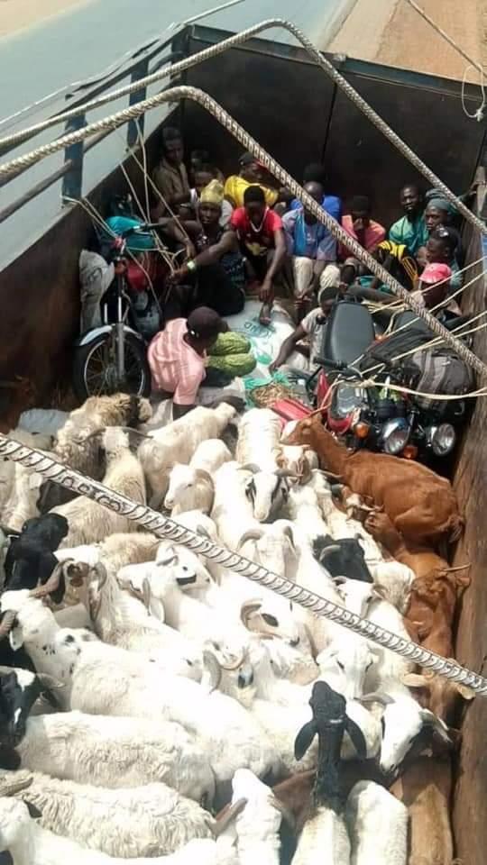 PHOTOs: Passengers from Kano Going to Kaduna Hide Amidst Ram